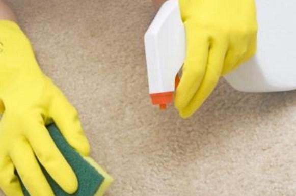 Как избавиться от застарелого запаха мочи