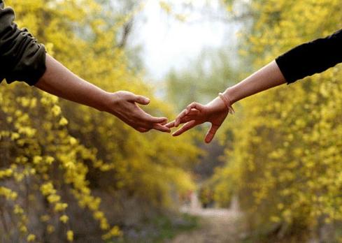 Дружба или врозь